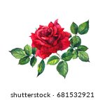 Stock photo red rose with leaves single flower watercolor 681532921