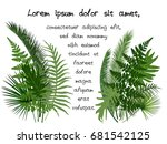 green tropical leaves vector... | Shutterstock .eps vector #681542125