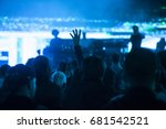 crowd at concert   cheering