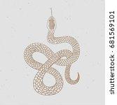vintage line snake. vector... | Shutterstock .eps vector #681569101