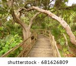 a hammock trail in central... | Shutterstock . vector #681626809