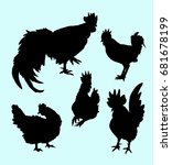 rooster hen and chicken animal... | Shutterstock .eps vector #681678199