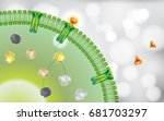 antibody blocking cell receptor  | Shutterstock .eps vector #681703297