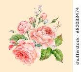 beautiful vintage watercolor...   Shutterstock . vector #682033474