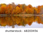 Bright Colored Autumn Trees An...