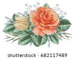 hand painted watercolor...   Shutterstock . vector #682117489