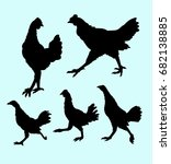 chicken animal silhouette. good ... | Shutterstock .eps vector #682138885