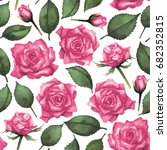 watercolor pink roses. hand... | Shutterstock . vector #682352815