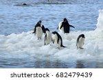 paulet island antarctica  group ... | Shutterstock . vector #682479439