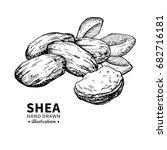 shea butter vector drawing.... | Shutterstock .eps vector #682716181