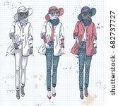 elegant women with coat  hat... | Shutterstock . vector #682737727