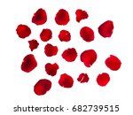 Stock photo rose petals on white isolated background romantic mood 682739515