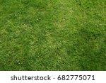 grass texture | Shutterstock . vector #682775071