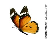 beautiful colorful monarch... | Shutterstock . vector #682863349