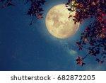 beautiful autumn fantasy  ... | Shutterstock . vector #682872205