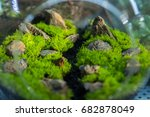 close up rectangular... | Shutterstock . vector #682878049