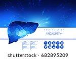 realistic human liver 2d... | Shutterstock . vector #682895209