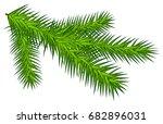 green juicy spruce branch.... | Shutterstock .eps vector #682896031