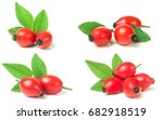 Rose Hip Berry With Leaf...