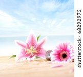 spa composition made of natural ... | Shutterstock . vector #68292973