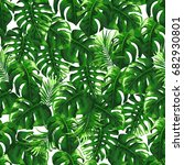 tropical palm leaves background.... | Shutterstock .eps vector #682930801