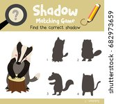 shadow matching game of badger... | Shutterstock .eps vector #682973659