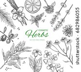 herbs and spices frame. vector... | Shutterstock .eps vector #682986055