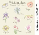 watercolor flower collection  ... | Shutterstock .eps vector #683082205