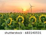 Field Of Sunflowers  Windmills...