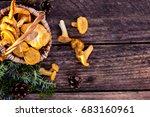 mushrooms chanterelle in the...   Shutterstock . vector #683160961