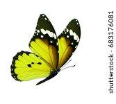beautiful yellow monarch... | Shutterstock . vector #683176081