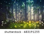 Forest Trees  Wood Glade  ...