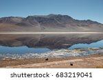 salar de tara  atacama desert ... | Shutterstock . vector #683219041