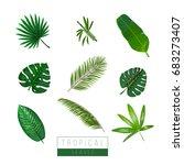 vector tropical leaves isolate...   Shutterstock .eps vector #683273407