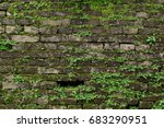 old dark brick wall with  green ... | Shutterstock . vector #683290951