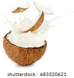 coconut milk and pieces... | Shutterstock . vector #683320621