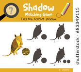 shadow matching game of