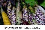 variety of corns.   Shutterstock . vector #683363269