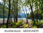 beautiful place on ritsa lake... | Shutterstock . vector #683414695