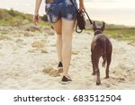 Stock photo young girl walking with her dog xoloitzcuintli on sand beach at sunset 683512504