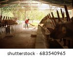 everyday life for farmer with... | Shutterstock . vector #683540965