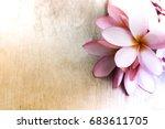 plum plain background and... | Shutterstock . vector #683611705