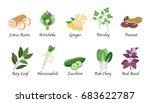 organic nature health vegetable ... | Shutterstock .eps vector #683622787