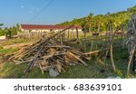 typical indonesian farm at the...   Shutterstock . vector #683639101