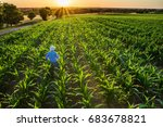 top view. a farmer in his... | Shutterstock . vector #683678821