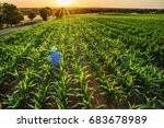 top view. a farmer in his... | Shutterstock . vector #683678989