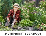 young woman gardener care of... | Shutterstock . vector #683729995