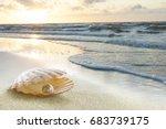 the sunset on the beach.  | Shutterstock . vector #683739175