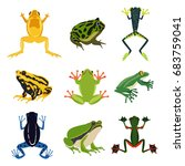 exotic amphibian set. different ... | Shutterstock .eps vector #683759041