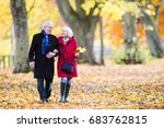 senior couple are walking... | Shutterstock . vector #683762815